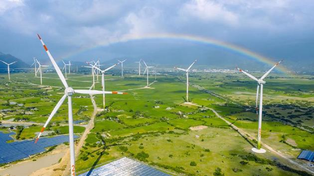 Wind power likely to disappoint foreign investors
