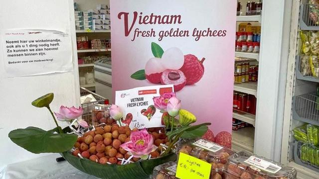 Hàng loạt đơn hàng từ Hà Lan, Pháp, Đức, Nauy đặt mua vải thiều Việt Nam - vietllot 655
