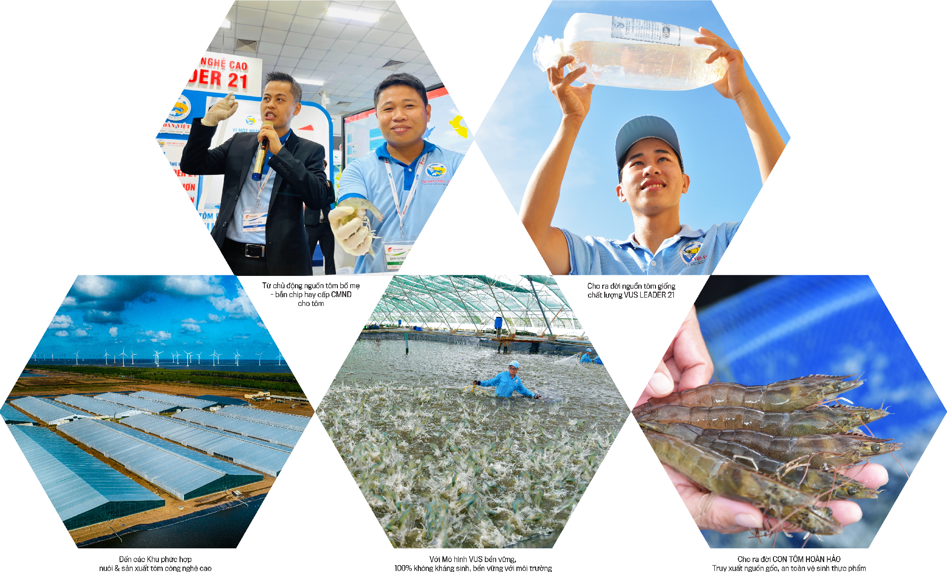 Tập đoàn Việt Úc: 20 năm phát triển ngành tôm công nghệ cao - Ảnh 3