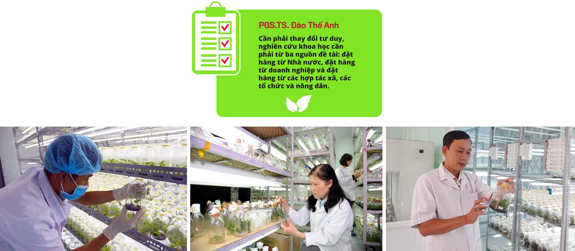 Khoảng trống lớn giữa cầu và cung khoa học nông nghiệp - Ảnh 5