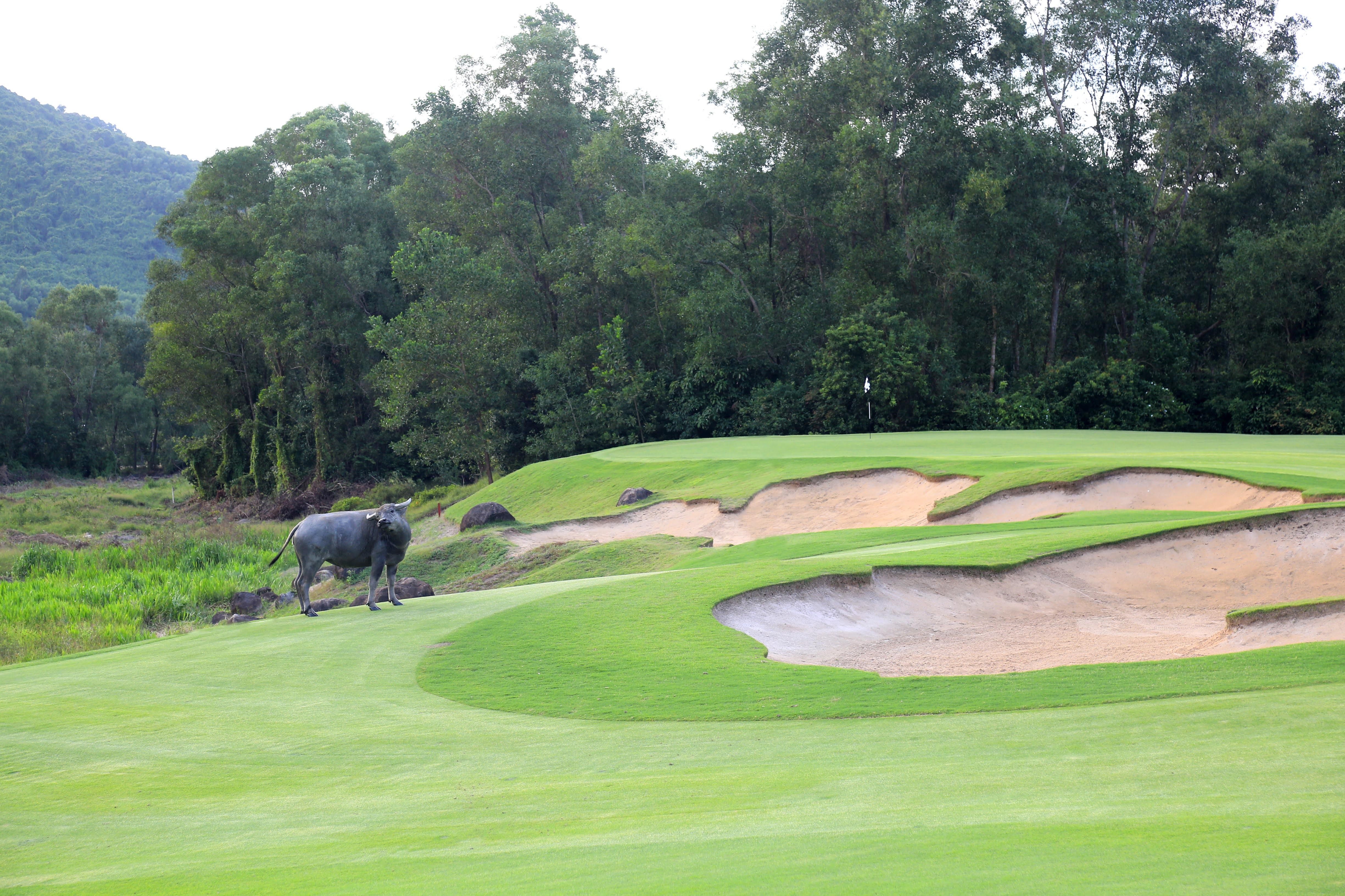 Sân golf từng đoạt nhiều giải thưởng quốc tế của Laguna Lăng Cô.
