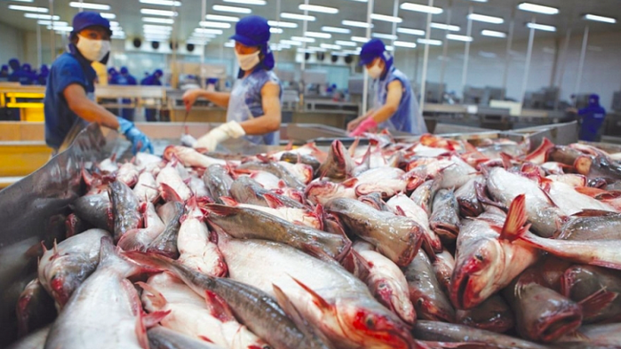 Dự báo xuất khẩu thủy sản sang Trung Quốc tháng 4 và những tháng tới sẽ hồi phục mạnh hơn.
