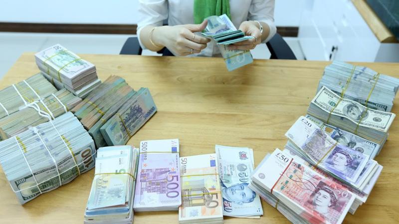 Liệu có một tương lai nào đó, tại Việt Nam, tương tự như trên thế giới, khi nói về ngân hàng A thì người ta sẽ không còn đặc thù liên tưởng ngay đến ông chủ hay bà chủ nào đó nữa? - Ảnh: Quang Phúc.