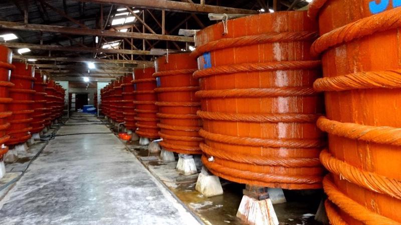 Một cơ sở sản xuất nước mắm theo quy cách truyền thống.<br>