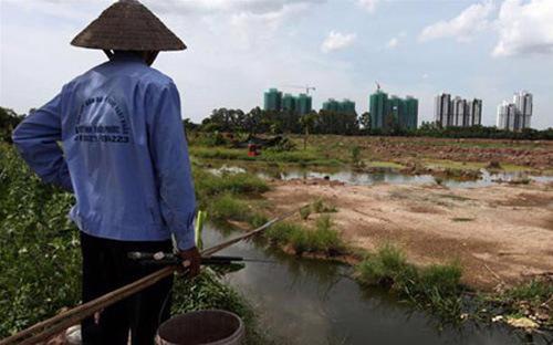 Các tỉnh, thành phố trực thuộc Trung ương tổ chức công bố công khai quỹ  đất nông nghiệp, nhu cầu chuyển nhượng, cho thuê, góp vốn bằng quyền sử  dụng đất của các hộ gia đình, cá nhân sử dụng đất.