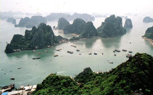 Tuy đề án đặt mục tiêu xây dựng hai đặc khu kinh tế, nhưng theo một  đại diện Quảng Ninh, tỉnh này hy vọng sẽ được chấp thuận làm trước một  khu, và trong trường hợp đó thì Vân Đồn sẽ được ưu tiên hơn Móng Cái.