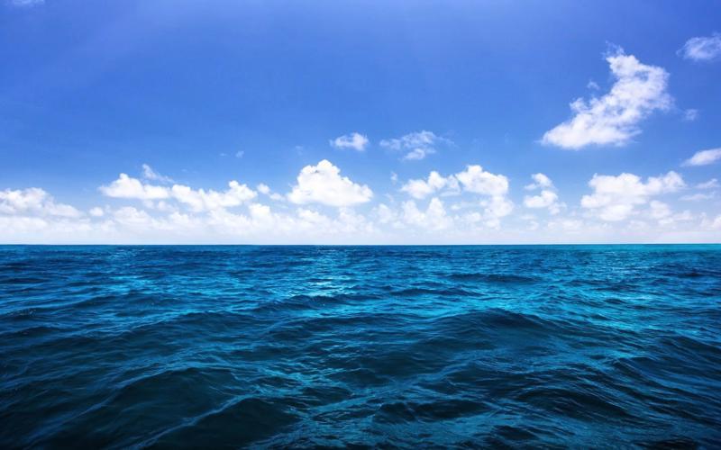 Hiện quyền chuyển nhượng, thừa kế, cho thuê lại, thế chấp, góp vốn giá  trị sử dụng mặt nước biển đã được quy định tại Luật Thủy sản 2003 thông  qua hình thức quyết định cho thuê.