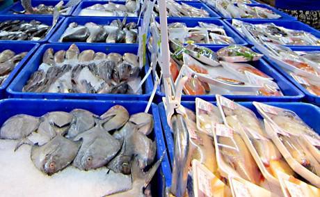 Theo phản ánh, hơn 800 sản phẩm gồm 668 sản phẩm dùng cải tạo môi trường nuôi trồng thủy sản và 140 sản phẩm thức ăn thủy sản không đảm bảo chất lượng đã được lưu hành trên thị trường bằng cách mua giấy phép lưu hành từ trung tâm. <br>