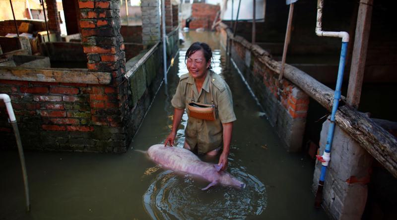 Nhiều nông hộ của Trung Quốc đã chịu thiệt hại lớn trong đợt lũ lụt tháng 7/2016 - Ảnh: Reuters.<br>