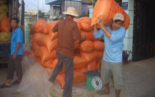 Gạo Việt Nam đang tiếp tục có mức giá cao hơn gạo Thái Lan.