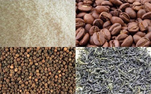 Kim ngạch xuất khẩu nông lâm thuỷ sản tháng 12 ước đạt 2,31 tỷ USD, đưa  giá trị xuất khẩu của ngành năm 2013 lên 27,469 tỷ USD, tăng 0,7% so với  năm 2012.