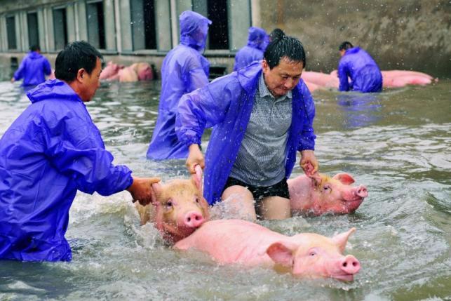 Lụt lội ở tỉnh An Huy, Trung Quốc, hôm 5/7.<br>