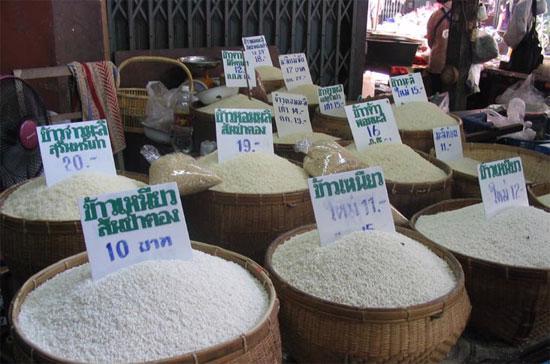 Các nhà giao dịch và giới chức trong lĩnh vực lúa gạo của Thái Lan cho hay, giá giạo của Thái Lan được dự báo sẽ giảm sau tuyên bố xả kho gạo dự trữ của Chính phủ nước này.