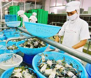 Đầu năm 2007 đã cho thấy có những tín hiệu đáng mừng về tăng trưởng cả về giá trị xuất khẩu và năng lực sản xuất chế biến - Ảnh: Việt Tuấn