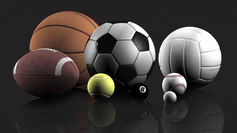 Theo Bộ trưởng Bộ Văn hoá - Thể thao và Du lịch Nguyễn Ngọc Thiện, quan điểm của Thủ tướng là không nên đưa quy định đặt cược thể thao vào luật, mà nên để Chính phủ thực hiện theo nghị định.