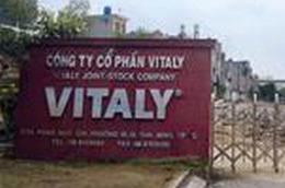 Quý 1/2011, VTA lỗ tiếp 8,838 tỷ đồng.