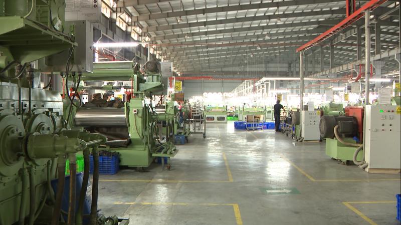 Với nhà máy đế được xây dựng từ năm 2002, TBS đã làm chủ được công nghệ sản xuất đế cao su, EVA và Phylon.