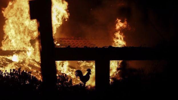 Ít nhất 20 người đã thiệt mạng vì trận cháy rừng đang xảy ra ở Hy Lạp - Ảnh: EPA/BBC.