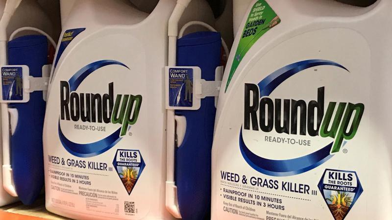 Thuốc trừ cỏ Roundup bày bán trong một siêu thị ở Mỹ - Ảnh: Reuters.