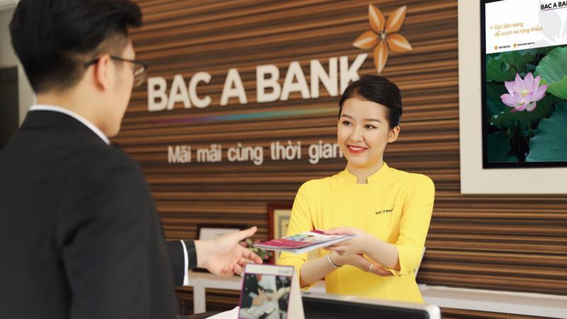 Ngân hàng Thương mại Cổ phần Bắc Á được thành lập từ năm 1994 và chính thức giao dịch cổ phiếu BAB trên thị trường UPCoM từ cuối tháng 12/2017.