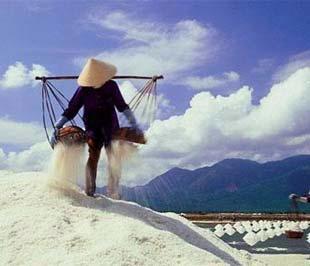 Nếu nghề muối không nuôi nổi diêm dân thì chắc chắn sẽ phải nhập khẩu muối.