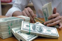 Tăng trưởng tín dụng bằng ngoại tệ tiếp tục là một điểm được chú ý trong tháng 1/2011.