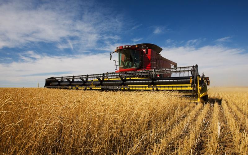 Đất nông nghiệp ở Australia đang là một kênh đầu tư được các nhà đầu tư Trung Quốc ưa thích.