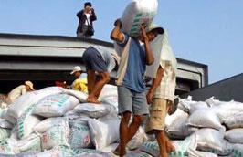 10 tháng đầu năm, lượng phân bón nhập khẩu là 796 triệu USD, giảm 30,6% so với cùng kỳ năm trước.