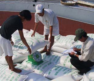 Chính phủ đã đồng ý chưa áp thuế tuyệt đối với gạo xuất khẩu giá dưới 800 USD/tấn.