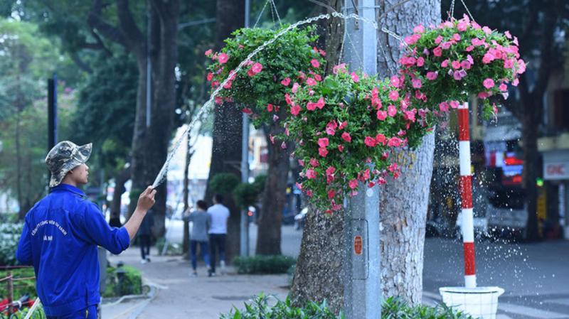 Nhiều tuyến phố trên địa bàn Hoàn Kiếm sẽ bị cấm trong thời gian 2 tuần để tổ chức chợ hoa xuân.
