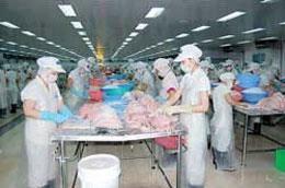 Một phân xưởng sản xuất của HVG.