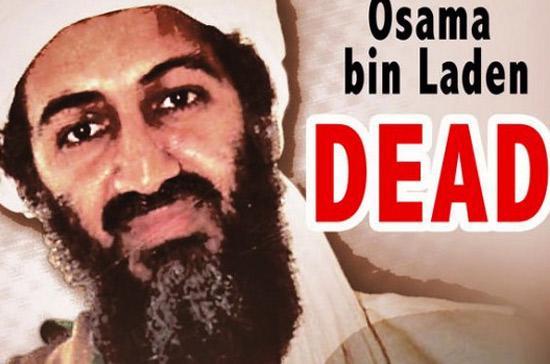 Cái chết của Bin Laden giống như một cơn bão làm tràn ngập Internet suốt tuần qua.