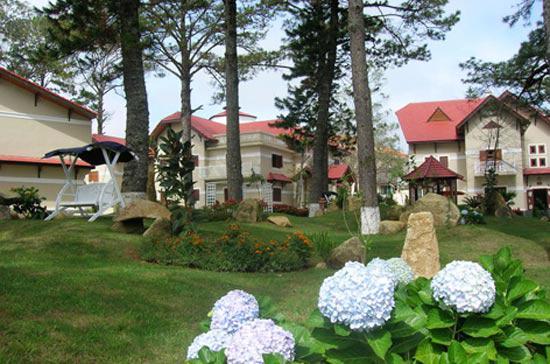 Vào cuối tháng 9/2009, UBND tỉnh Lâm Đồng đã ra quyết định thu hồi 11 biệt thự Pháp cổ ở khu Tỉnh ủy Lâm Đồng cũ nằm trên đường Nguyễn Du và Phó Đức Chính, thành phố Đà Lạt.