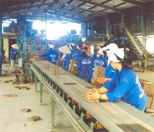 Nguồn nhân lực ở nông thôn hiện vừa thiếu, vừa yếu.