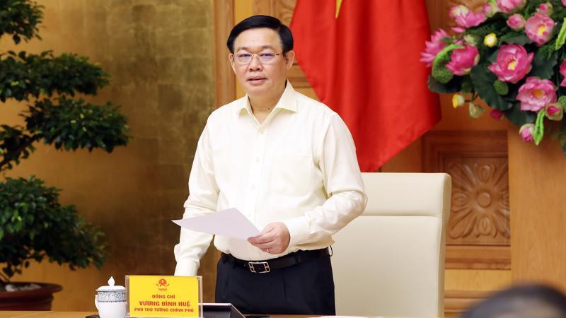 Phó thủ tướng phát biểu khai mạc cuộc họp - Ảnh: Thành Chung