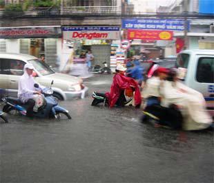 Những trận mưa như thế này làm đau đầu các chủ xe hơi.