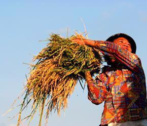 Tuy đạt được những kết quả tích cực, nhưng kinh tế 7 tháng vẫn đứng trước những thách thức - Ảnh: Việt Tuấn.