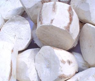Sắn (khoai mì) là một trong những nguyên liệu sản xuất nhiên liệu ethanol.