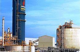 DPM đề ra các chỉ tiêu năm 2010 với sản lượng sản xuất ước đạt 740 ngàn tấn urea và tham gia kinh doanh xuất nhập khẩu khoảng hơn 200.000 tấn phân bón các loại.