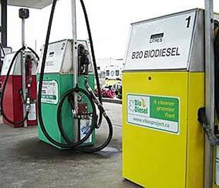 Nhiên liệu sinh học đã có chỗ đứng vững chắc hơn. Trong ảnh là một trạm xăng có cung cấp nhiên liệu sinh học tại Mỹ.