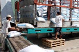 Trước mắt, sàn giao dịch gạo sẽ ưu tiên cho các hợp đồng mua bán giao ngay và lâu dài là tiến tới giao dịch mua bán giao chậm.