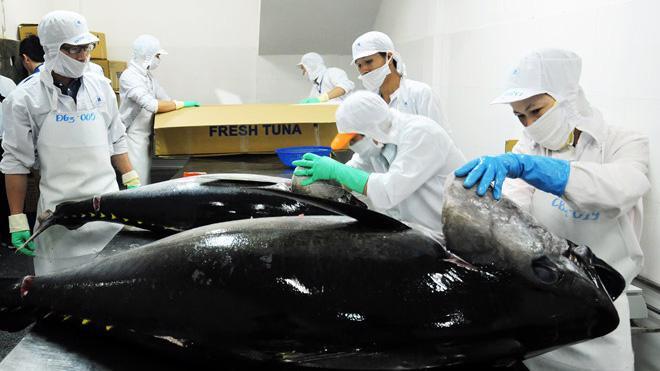Nhu cầu tiêu thụ cá ngừ tại Trung Đông liên tục tăng trong vài năm qua.