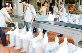 Kết thúc năm 2010, Việt Nam xuất khẩu được khoảng 6,8 triệu tấn gạo