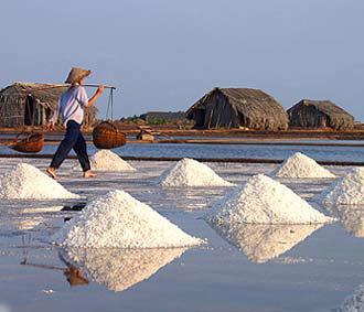 Năm nay, Việt Nam phải nhập khẩu đến 50% lượng muối ăn để phục vụ nhu cầu trong nước