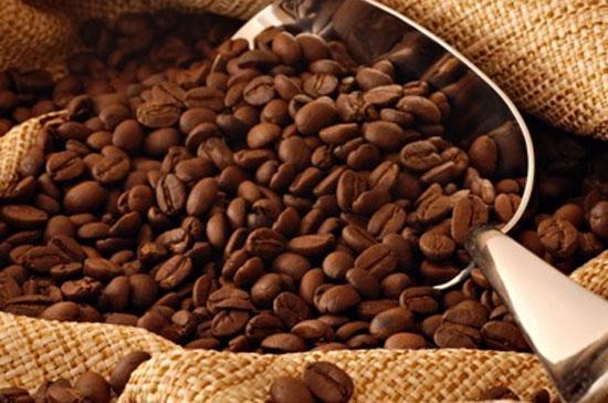 Một số chuyên gia mới đây dự báo, nhờ thời tiết thuận lợi, Việt Nam có thể đạt sản lượng ít nhất 25 triệu bao cà phê trong niên vụ 2011-2012 bắt đầu vào tháng 10 năm ngoái.