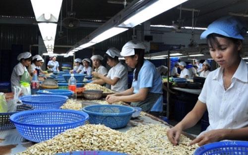 Để đưa hàng Việt vào thị trường như Nhật Bản, Mỹ nên thuê những tổ chức tư vấn quốc tế am hiểu các thủ tục pháp lý để tư vấn.<br>