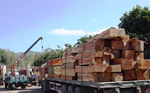 Theo số liệu của Bộ Công Thương, 7 tháng đầu năm 2016, kim ngạch gỗ và  sản phẩm gỗ nhập khẩu ước đạt trên 1 tỷ USD 20,6% so với cùng kỳ năm  2015.