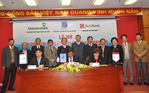 Hợp đồng có trị giá 150 triệu USD do Sở Giao dịch của Vietcombank làm  ngân hàng đầu mối với tỷ lệ cho vay của Vietcombank là 83,5% (tương  đương với 125,25 triệu USD) và SeABank là 16,5% (tương đương với 24.75  triệu USD).