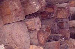 Hàng năm lượng gỗ nhập khẩu từ Lào chỉ chiếm một phần rất nhỏ trong tổng lượng gỗ nhập khẩu của Việt Nam.
