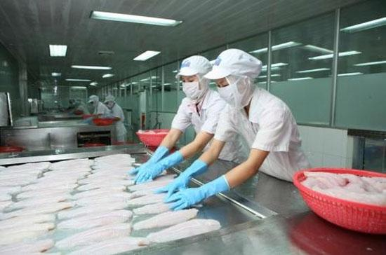 Trong 5 tháng đầu năm 2012, xuất khẩu thủy sản đạt 2,3 tỷ USD - Ảnh: HVG.